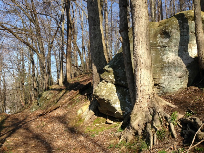 Maybe I had Bigfoot on the brain, but this boulder looks suspiciously like the big guy himself.